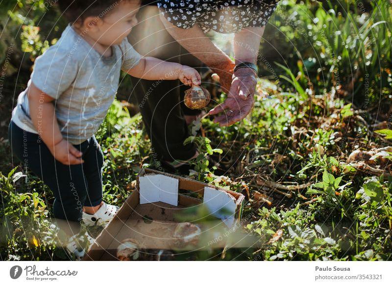 Gartenarbeit von Kindern und Großmüttern Großmutter Mensch Enkel Familie & Verwandtschaft Zwiebel Bioprodukte organisch Generation Glück authentisch Natur Frau