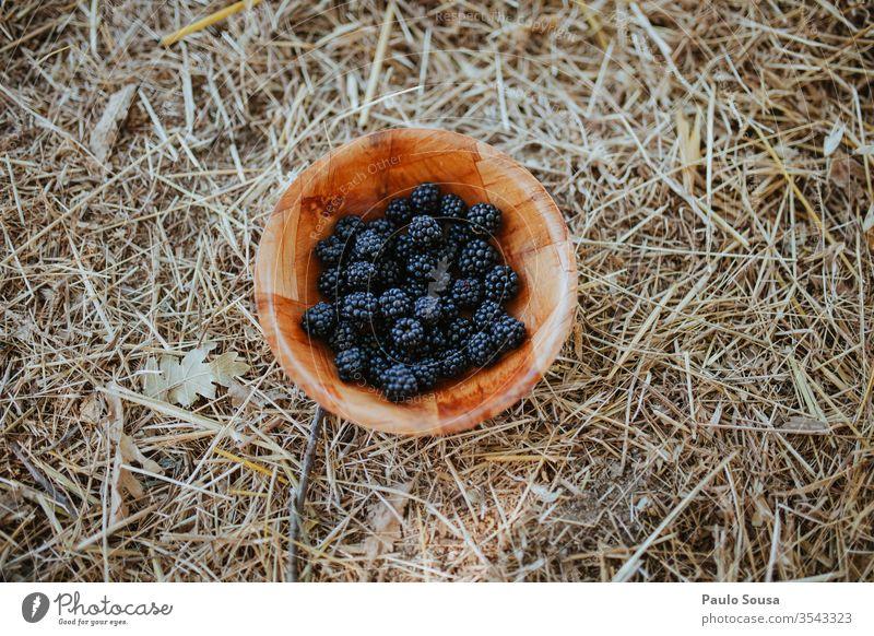 Schale mit Brombeeren Schalen & Schüsseln Frucht Sommer flache Verlegung lecker Lebensmittel frisch Gesundheit Gesunde Ernährung rot Farbfoto natürlich süß Diät