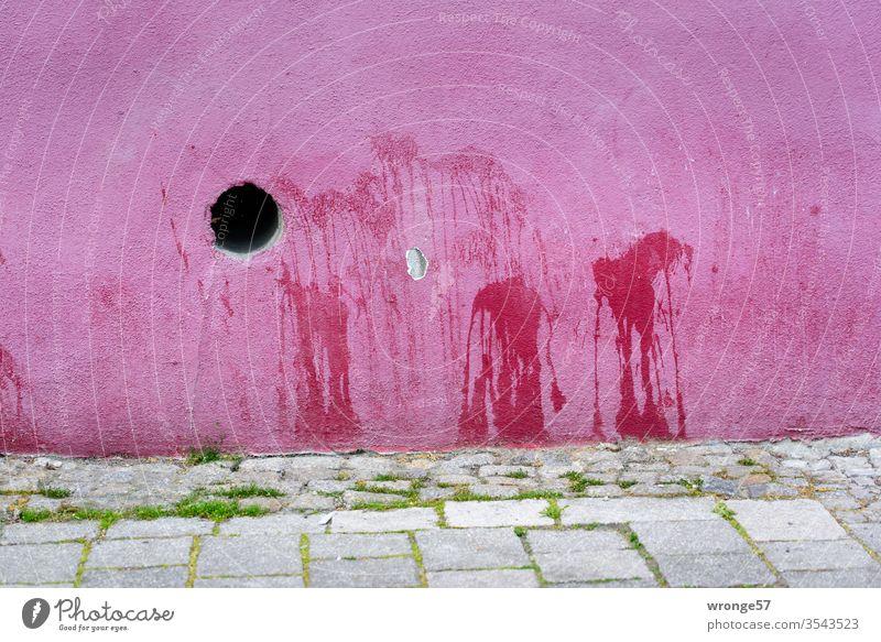 Flecke an einer pinken Hauswand Markierungen Uriniert Urinflecke Fassade Wand bunt Außenaufnahme Menschenleer Farbfoto Öffnung Tag Gehweg Fußweg Gras