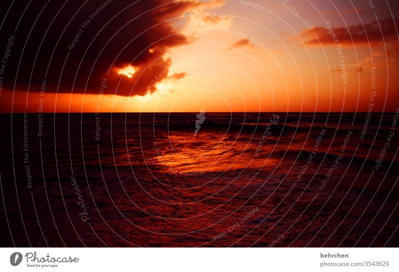 und wieder ein SONN(En)tag... Wasser Licht Kontrast Ferien & Urlaub & Reisen Tourismus Ausflug Abenteuer Ferne Freiheit Landschaft Himmel Wolken Horizont Sommer
