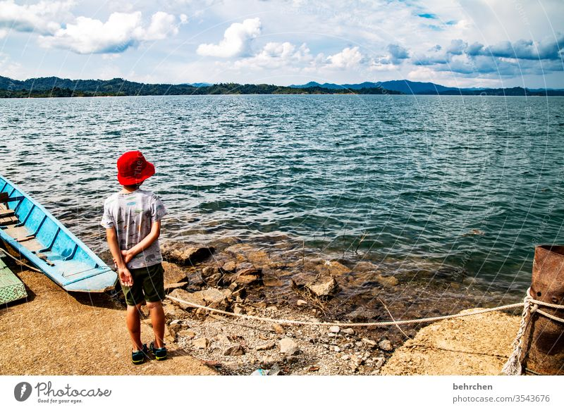 schau in die ferne Sonnenlicht Kontrast Licht Tag Außenaufnahme Farbfoto Iban Stausee Fernweh beeindruckend batang ai Sarawak Borneo Malaysia Asien fantastisch