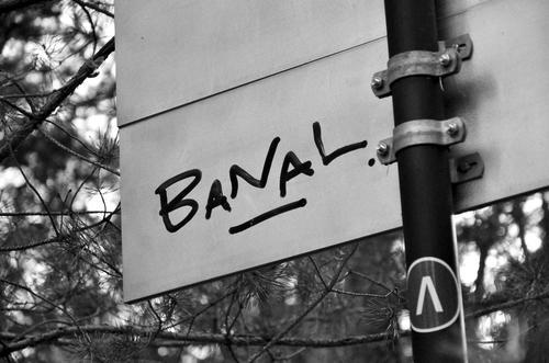 Wörtlich genommen | Ein Wörtchen mitreden... Auf der weissen Rückseite eines Schildes am Weg durch einen Kiefernwald hat jemand mit dickem schwarzen Filzstift das Wort BANAL geschrieben - in Grossbuchstaben, unterstrichen und mit Punkt.