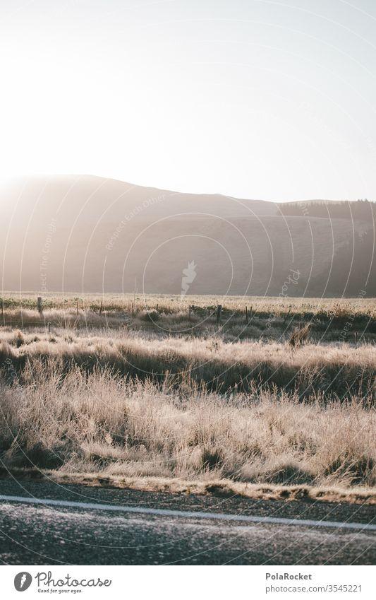 #As# Trucker-Morgen Morgendämmerung Morgennebel morgens Morgenland morgenlicht Morgentau Wiese Sonnenaufgang Neuseeland Neuseeland Landschaft Farbfoto