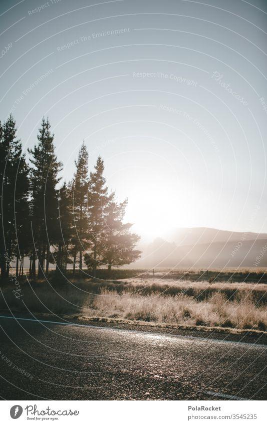 #As# Teurer Morgen Morgendämmerung Morgennebel morgens morgenlicht Morgentau Nebel Nebelschleier Nebelstimmung Straßenrand Landstraße Menschenleer Außenaufnahme
