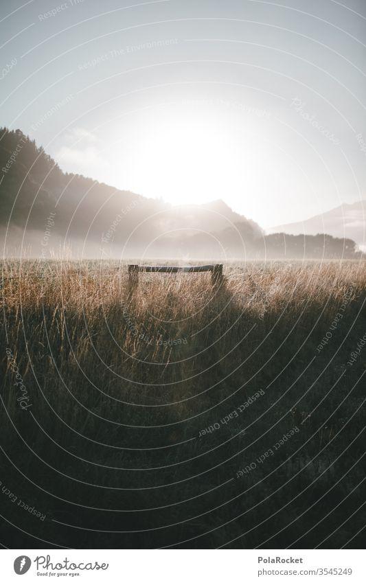 #As# Nebelansichten Nebelschleier Nebelstimmung Nebelbank Nebelmeer Nebelwand Nebelwald Nebeldecke Nebelfeld Neuseeland Neuseeland Landschaft Feld Wiese