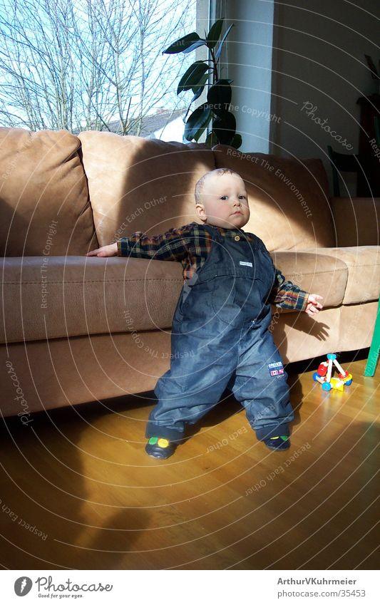 Niklas extra cool Mann Herbst Fenster Körperhaltung Sofa Wohnzimmer Kleinkind Parkett Kissen