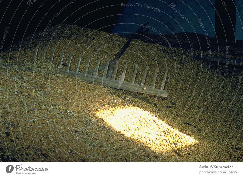 Getreide eingebracht gold Bauernhof Getreide Landwirtschaft Stillleben Scheune Rechen