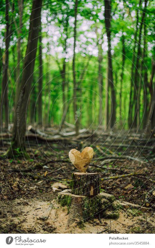 #S# Waldliebe Liebe Herz Naturliebe Naturschutzgebiet naturverbunden Naturerlebnis Umwelt Menschenleer schnitzen Handwerk Baumstamm herzförmig Bäume Waldboden