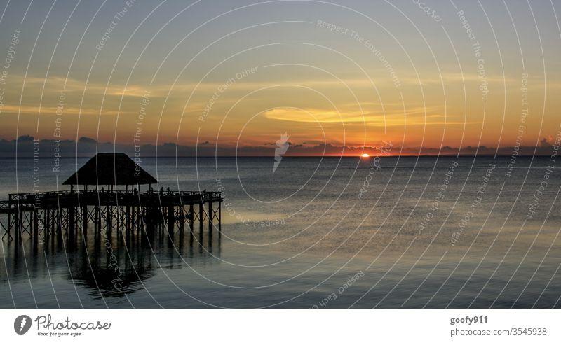 Fernweh Sansibar Afrika Sonnenuntergang Wolken Himmel Meer Wasser Abend Ferien & Urlaub & Reisen Abenddämmerung Küste Romantik Landschaft Farbfoto Außenaufnahme