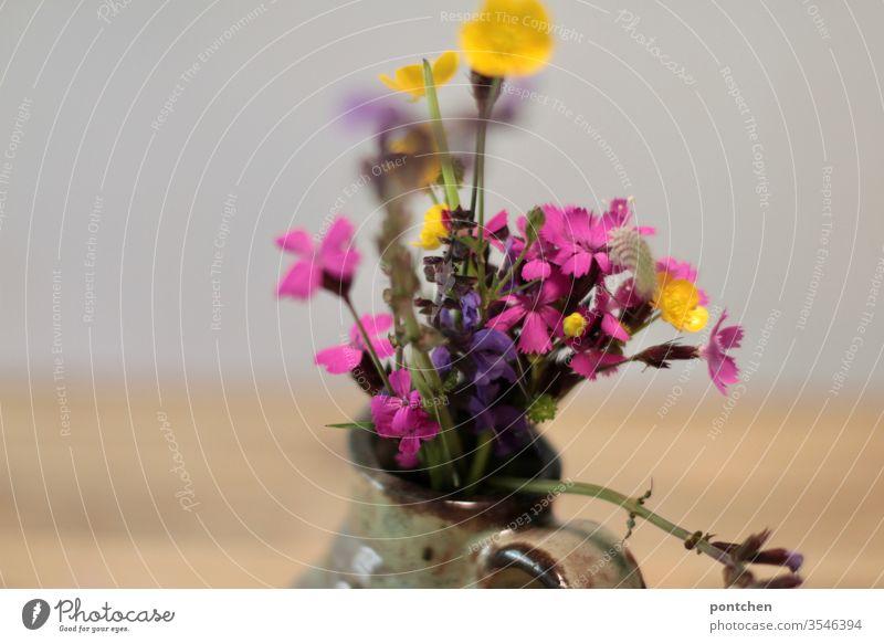 Butterblume, Eisenkraut Salbei, Kartäuser Nelke, Ein bunter, selbstgepflückter,  Strauß Wiesenblumen in einer kleinen Vase Wildblumen vase pink gelb lila