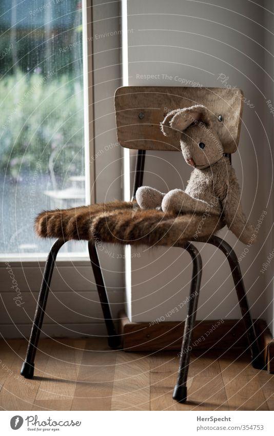 What am I doing here? Tisch Mauer Wand Spielzeug Stofftiere beobachten warten alt niedlich weich braun Gelassenheit Langeweile Traurigkeit Müdigkeit Einsamkeit