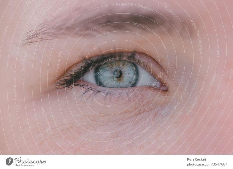 #As# Im Blick Farbfoto Haut Iris Sehvermögen Frau Detailaufnahme Makroaufnahme Pupille Nahaufnahme Gesicht Wimpern augenlicht Mensch Augenheilkunde Augenfarbe