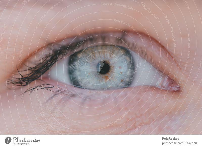 #As# Blue Planet Auge Augenbraue Augenfarbe Augenheilkunde augenlicht Blick Mensch Wimpern Gesicht Nahaufnahme Pupille Makroaufnahme Detailaufnahme Frau
