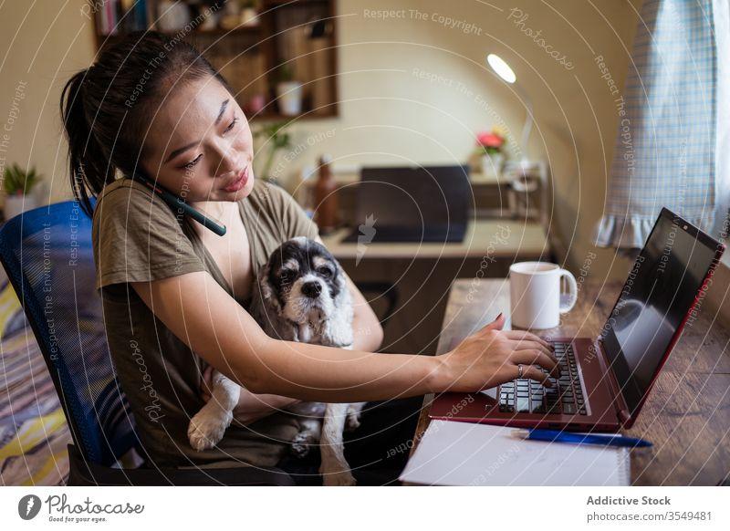 Vielbeschäftigte asiatische Unternehmerin arbeitet am Laptop im Heimbüro Arbeit reden Frau Smartphone zur Kenntnis nehmen Projekt multitask benutzend ethnisch