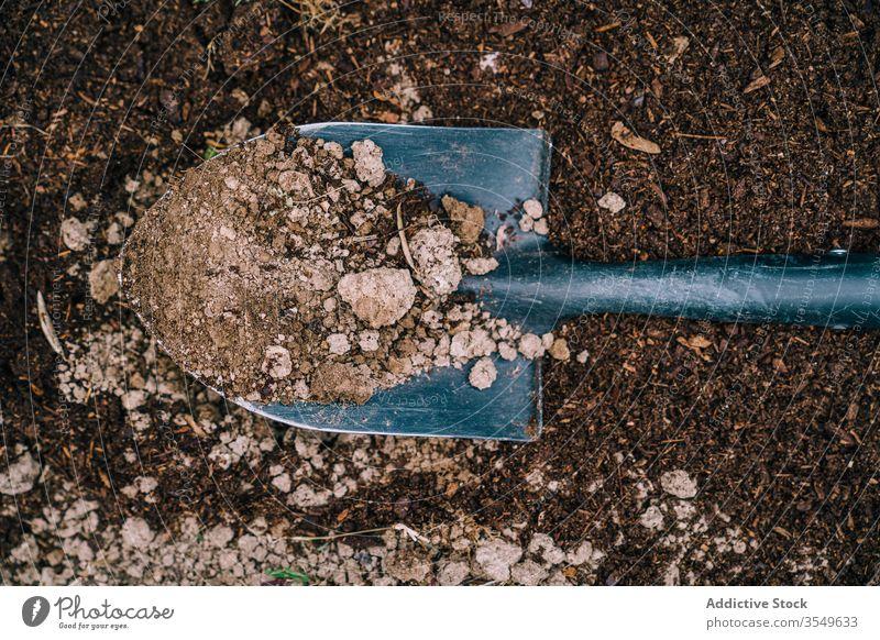 Schaufel mit Erde im Garten Boden schaufeln Instrument Gerät Bauernhof Graben Werkzeug kultivieren Spaten Landschaft Ackerbau Feld tagsüber Frühling Wachstum