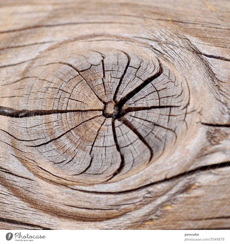 sterntaler trocken Astloch sternförmig Risse Nahaufnahme Holz alt Detailaufnahme Maserung verwittert Strukturen & Formen Außenaufnahme