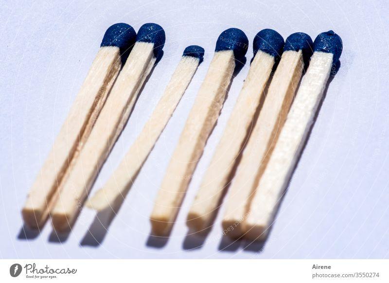 sechs dicke und ein dünner Hitzkopf I Streichholz weiß blau Zündholz brennen entzünden Zündholzkopf Zündung zündeln Feuer hell Wärme Licht heiß heizen hitzig