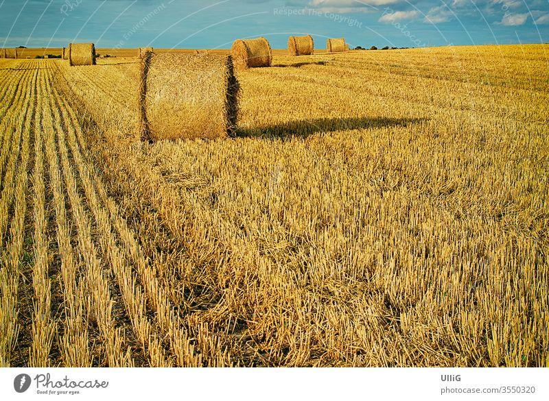 Strohballen auf einem abgeernteten Getreidefeld am Ende des Sommers. Ballen Feld ländlicher Raum Land Ernte Landschaft Ackerbau Natur malerisch atmosphärisch