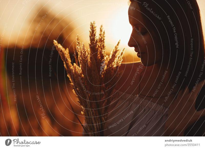 Schöne sorglose Frau auf Feldern, die im Freien glücklich ist. Stimmungsvolles Lifestyle-Foto einer jungen schönen Frau im Freien. Braune Haare und Augen. Warmer Herbst. Warmer Frühling.