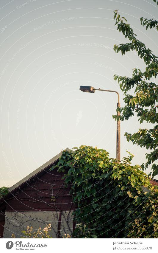 Straßenlampe über der Laube Himmel Natur Sommer Pflanze Sonne Baum Blatt Umwelt Beleuchtung Zufriedenheit Schönes Wetter ästhetisch Straßenbeleuchtung Wolkenloser Himmel Scheune Schrebergarten