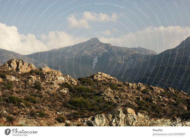 Berg Gipfel auf Korsika im Sommer Berge u. Gebirge ausblick mediterran Panorama (Aussicht) Aufstieg Mittelmeer Ferien & Urlaub & Reisen Farbfoto Natur