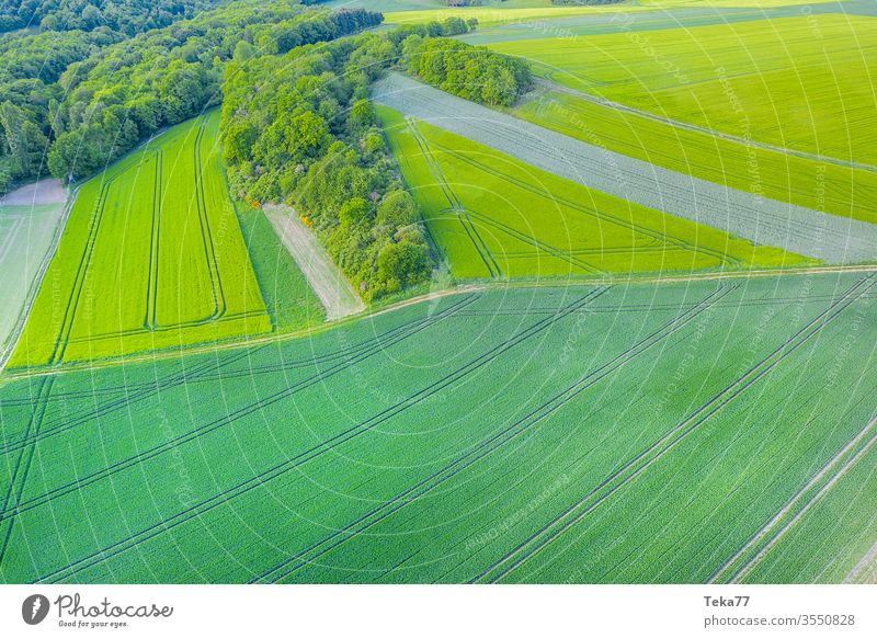 Wiesen und Felder von oben im Hintergrund landwirtschaftlich Landwirtschaftlicher Weg Traktor Traktorpfad Feldhintergrund Wiesen-Hintergrund Air Luftaufnahme