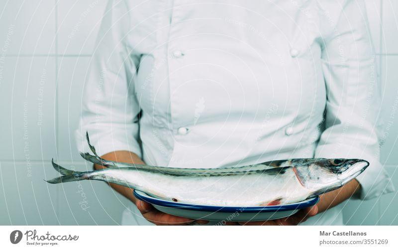 Frau in Kochmontur zeigt ein Gericht mit frischem Fisch. Konzept der Küche. Küchenchef Makrele Speise Hand Person professionell natürlich Tierwelt Meeresfrüchte