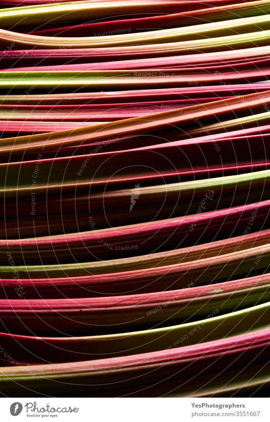 Rhabarberstengel in Nahaufnahme. Hintergrund: Frisches Gemüse abstrakt Ackerbau aromatisch kulinarisch Kurven Bauernmarkt Geschmacksrichtungen Lebensmittel