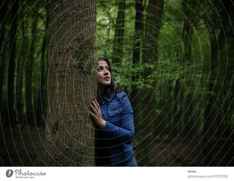 in the woods wald baum dunkel stehen beobachten sehen schauen frühjahr geheimnisvoll entdecken scheu sicherheit schutz grün