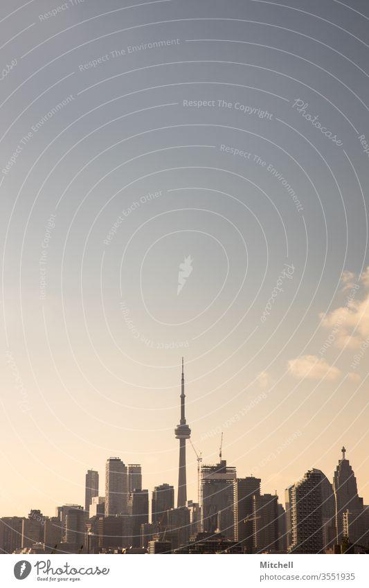 Toronto Skyline während der Golden Hour Wolkenkratzer Architektur Wahrzeichen Stadtbild Stadion Panorama Kanada reisen Abend Hafengebiet urban Sonnenuntergang