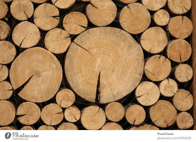 gestapelte Holzbalken braun Kaminholz Makroaufnahme Baumstamm Wald