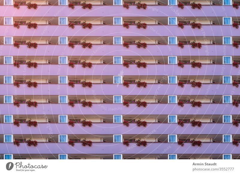 architektonisches Muster, violette Balkonfassade mit Geranie Anonymität anonym Architektur Hintergrund groß Klotz bürgerlich Gebäude Großstadt Konstruktion