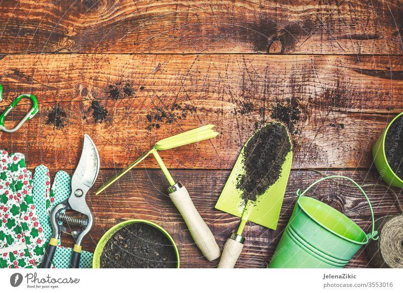 Bereit für die Gartenarbeit im Frühling Blume grün Sommer Wachstum Natur Bewässerung Blumentopf Haus im Freien Pflanze geblümt Topf botanisch Hausarbeit hölzern