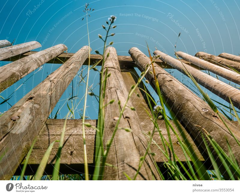 Zaun Gras Farbfoto Himmel Tag Außenaufnahme Natur grün Wiese Menschenleer Zaunpfahl Schönes Wetter Weide Wolken Textfreiraum oben Umwelt blau Feld Landschaft