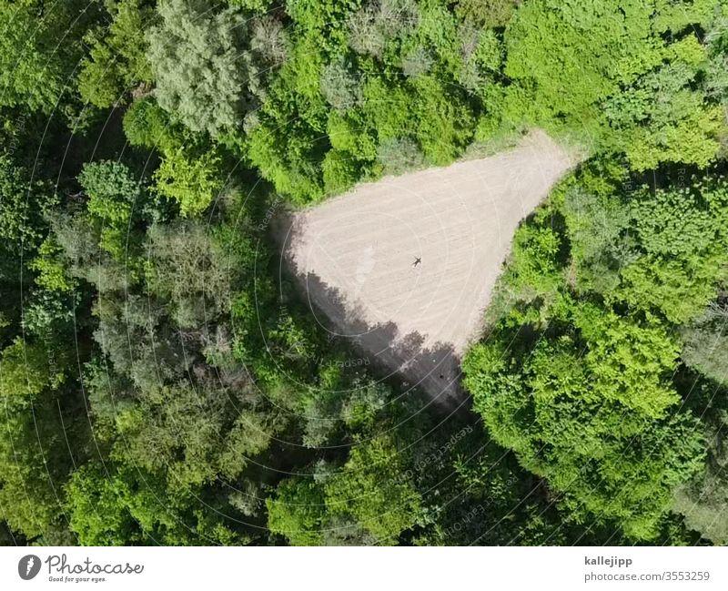 lICHtung Wald Natur Ackerboden Ackerland Ackerbau Lichtung Naturschutzgebiet Naturliebe Drohnenansicht Drohnenbilder Drohnenaufnahme Drohnenfotografie