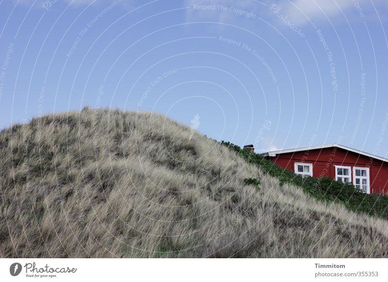 Zusammen. Ferien & Urlaub & Reisen Umwelt Pflanze Himmel Schönes Wetter Nordsee Düne Dänemark Haus Ferienhaus Fassade Fenster Dach ästhetisch einfach blau grau