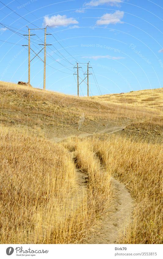 Prärie in Colorado Gras Wiese trocken Trockenheit trockenes Gras Stromleitungen Energie Energieversorgung ländlich Boulder Außenaufnahme Natur Landschaft Feld