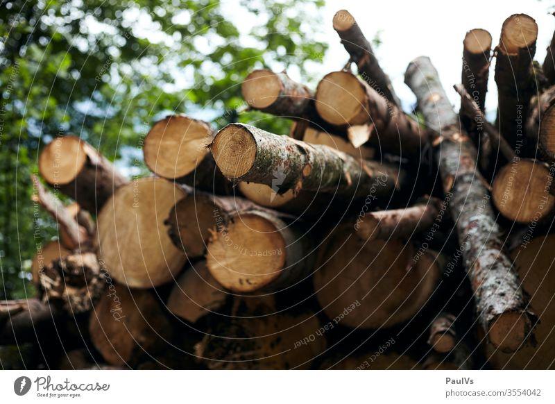 Holz Haufen Holzstoss Forstarbeit holzstapel feuerholz holzhacken holzhaufen brennholz holzhaus forstarbeit natur wald forstarbeiter natürliche rohstoffe