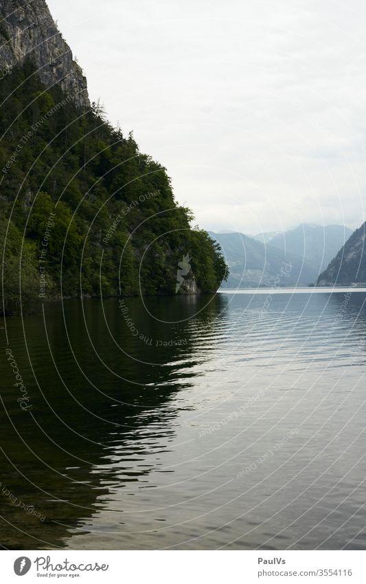 Seeblick Traunsee Alpensee Spiegelung Wald und Wasser Berg Ufer Klippe Seeufer Salzkammergut bewölkt Traunstein Gmunden Oberösterreich Österreich Urlaub