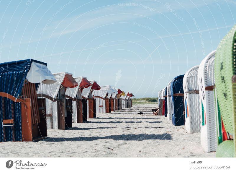 Strandkörbe am Meer Strandkorb Strandkorbvermietung Lockdown Leerstand leerstehend Ostsee Ferien & Urlaub & Reisen Sand Erholung Küste Himmel Sommer ruhig