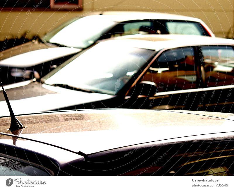Mokacreme Sonne Stil Fenster Bewegung PKW Verkehr beige zyan
