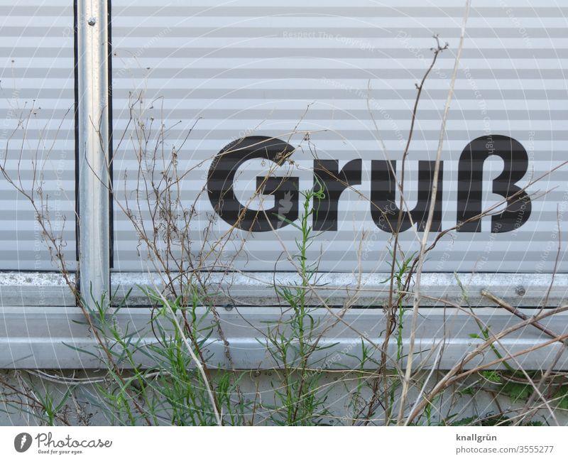 """Das Wort """"Gruß"""" steht unten auf einer Aluminium Wandverkleidung, davor ein paar halb verwelkte Grünpflanzen Schilder & Markierungen Buchstaben Fassade"""