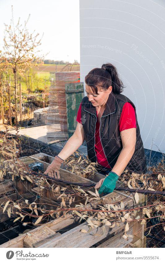 Frau bringt Äste als Basis ins Hochbeet ein Mensch Garten Gartenarbeit Gemüseanbau Außenaufnahme Freizeit & Hobby Farbfoto Bioprodukte Erde Handwerk bauen