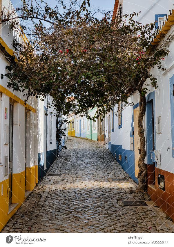 kleine Gasse mit bunten Häusern und einem Baum in Ferragudo, Portugal Europa Altstadt Ferien & Urlaub & Reisen Haus Architektur Menschenleer Außenaufnahme Tag