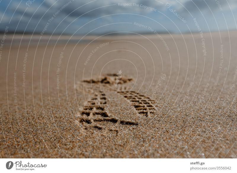 Weitwinkelaufnahme am Sandstrand mit Felsen und blauem Himmel Strand Felsalgarve Küste Meer Ferien & Urlaub & Reisen Natur Landschaft Wasser Reisefotografie