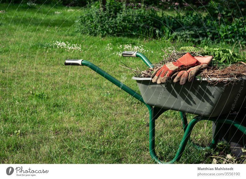 Schubkarre mit Unkraut und Gartenhandschuhen Gartenarbeit Außenaufnahme Farbfoto Pflanze grün Wachstum Natur Ackerbau Bauernhof natürlich organisch Erde Boden