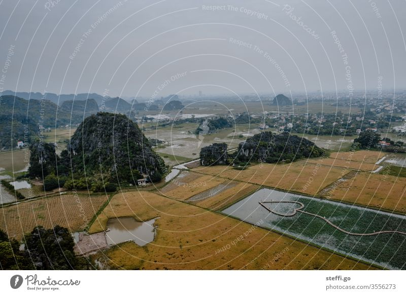 Blick auf die Fels- und Karstlandschaft vom Hang Mua Viewpoint in Ninh Binh in Vietnam; trockene Halong-Bucht ninh binh binh Karstgebirge trockene Halon-Bucht
