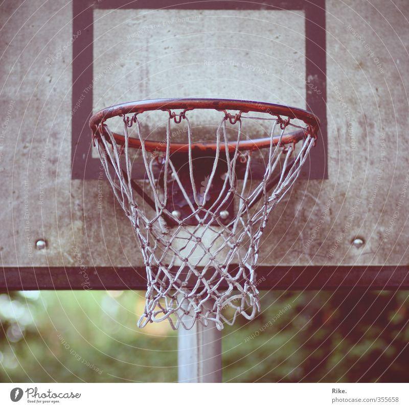 Präzision erwünscht. Sommer Freude Sport Bewegung Spielen Freizeit & Hobby Kraft Zufriedenheit Lifestyle planen Fitness Ziel Ball Konzentration Kontrolle