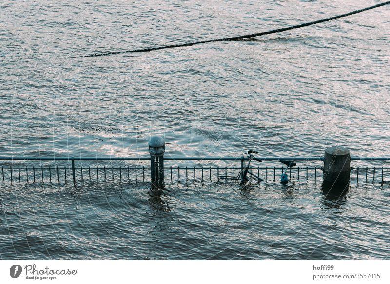 Fahrrad vom Hochwasser halb verschlungen hochwasserlage Überflutet Rad Klimawandel globale Erwärmung Meer Wasser Landschaft Umwelt Weser sturmflut