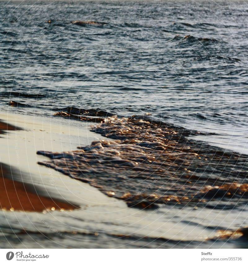 Lichtstimmung Natur Urelemente Wasser Schönes Wetter Wellen Küste Strand Ostsee Meer schön braun gold Romantik Urlaubsstimmung Abenddämmerung Meeresstimmung